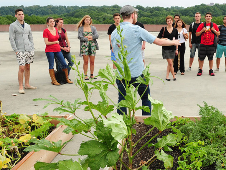 Students and faculty on the rooftop garden at Manhattan College.