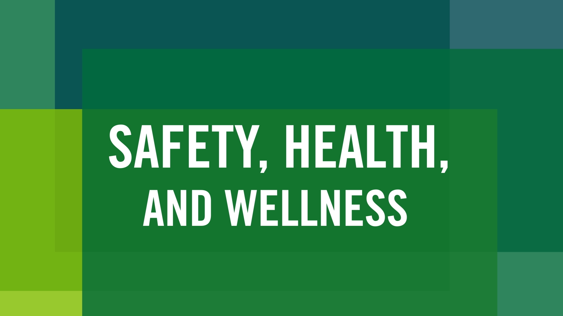 safety, health and wellness at Manhattan College