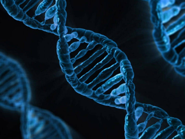 Image of DNA molecules.