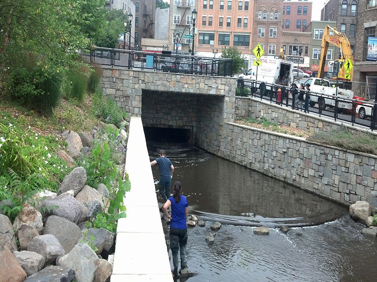 College researchers examine a newly-daylighted Saw Mill River.