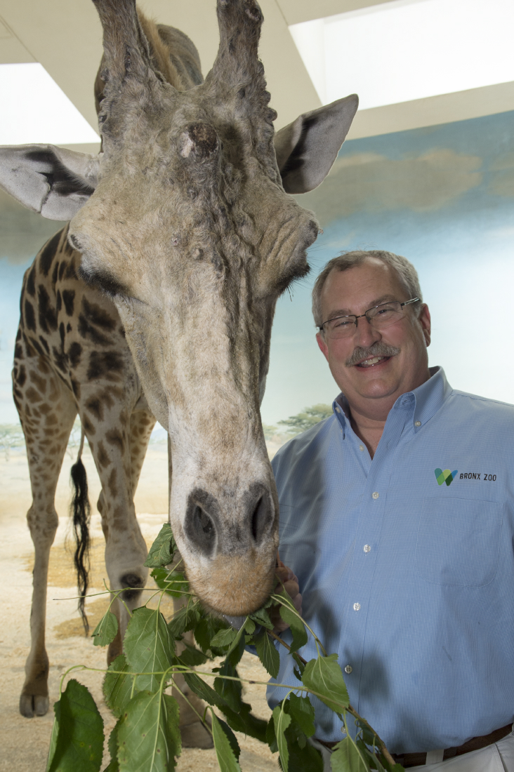 jpeg_julie-larsen-maher-6851-new-logo-breheny,-jim-with-reticulated-giraffe-mike-cgb-bz-07-18-13-1.jpg