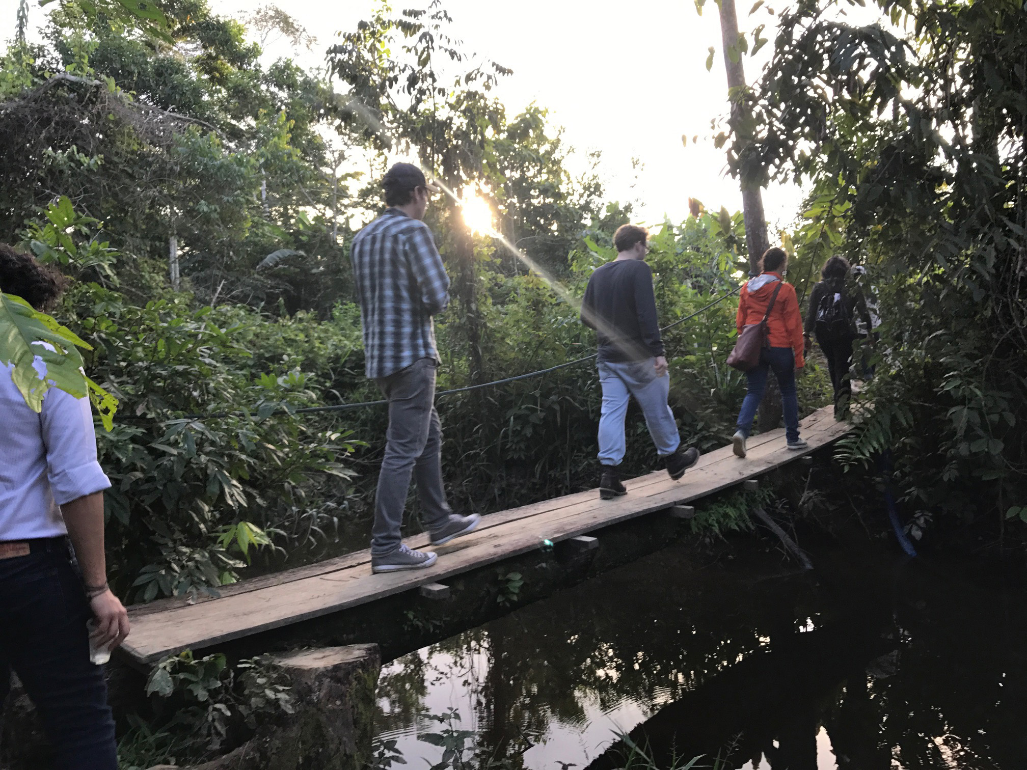 MBA students cross a bridge in the Amazon rainforest