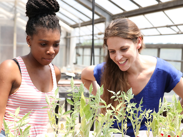 Student and faculty doing research in rooftop garden