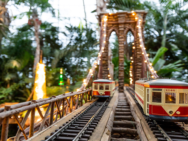image of holiday train show lit up