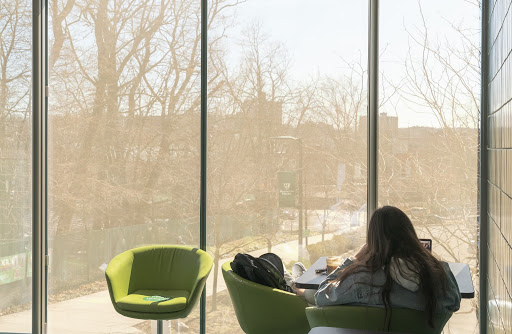 Student sitting in front of a clear window with the sun shining, studying